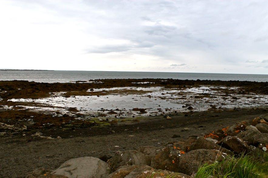 Photos of the seaside of Reykjavík
