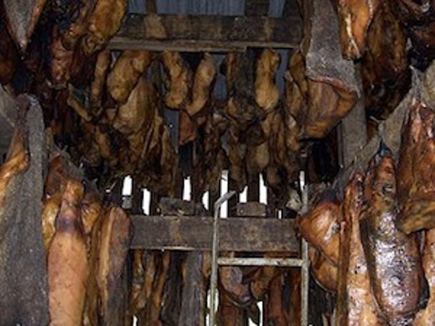 酵鲨鱼肉,图片来自维基百科