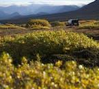 Travel to Þórsmörk in a Super Jeep for a Þórsmörk hiking adventure in Iceland.
