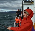 Going fishing in the waters by Reykjavík's harbour might catch you cod or haddock.