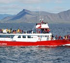 ATV & Whale Watching Tour from Reykjavík