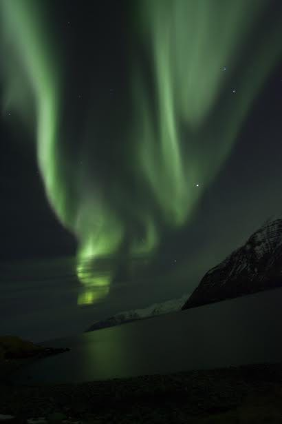 Northern Lights and 3 Course Dinner