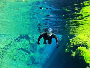 Wetsuit Snorkelling Tour in Silfra