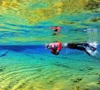 まるで空を飛んでいるように、シルフラの泉の水がもの凄い透明度となっている