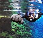 Experimente la naturaleza como nunca antes con un tour de buceo con traje seco en Silfra.