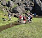 On a hiking tour from Egilsstaðir, you'll pass beautiful meadows.