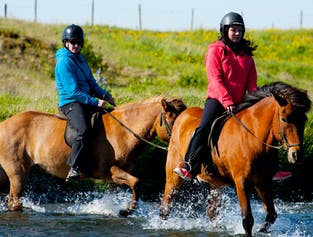 2時間の乗馬ツアー クヴェラゲルジ