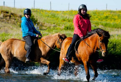 2-Hour Horse Riding   Heritage Tour