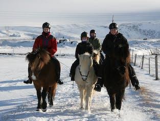 2-Hour Horse Riding Tour | Elves & Mysteries