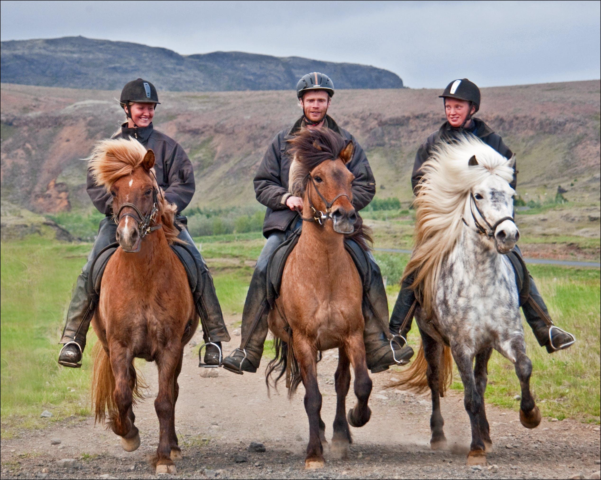 3 Hours Horse Riding | Soft River Banks Tour