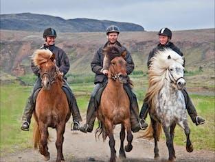 経験者向け 3時間の乗馬ツアー