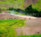 3小时骑马+温泉地貌团