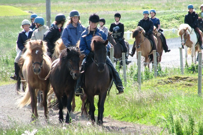 Travel through the idyllic countryside setting of South Iceland on horseback.