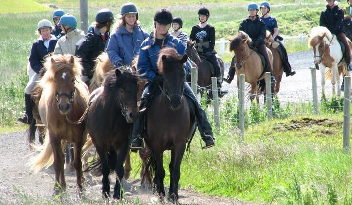 Travel through the idyllic countryside setting of South Iceland on horseback.