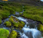 One of the many rivers of the Westfjords, trickling through a summer field of green moss and grass.