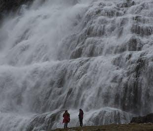 Viaje a tu aire de 8 días | Fiordos del oeste y la península de Snæfellsnes