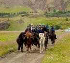 Ride the Icelandic horse below towering mountains in southwest Iceland.