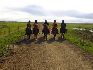 Horse Riding & Hiking in a Geothermal Valley | Day Tour