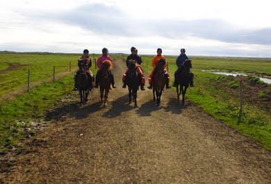 Horse Riding & Hiking in a Geothermal Valley   Day Tour