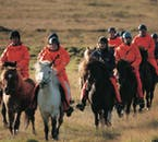 You'll get to try the Icelandic horse's unique 'tölt' gait on this tour.