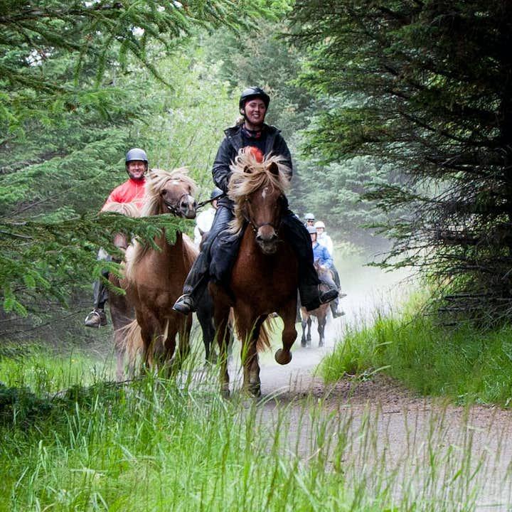骑马温泉一日游|3小时骑马+午餐+地热小镇温泉泳池