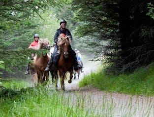 Horseback Riding & Geothermal Pool   Day Tour