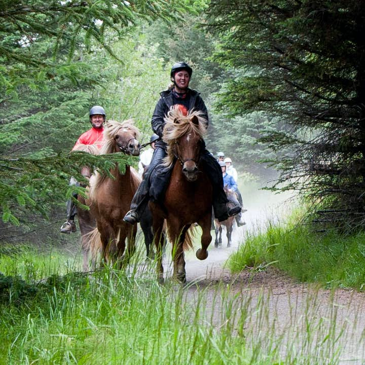 Riding in the Icelandic nature on a horse is what many dream about.