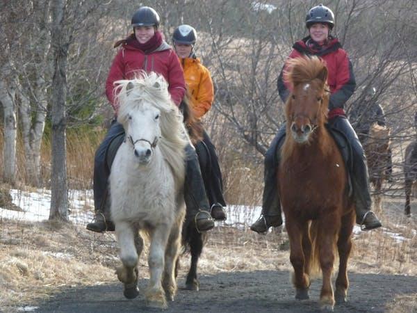 Eldhestar Horse Riding