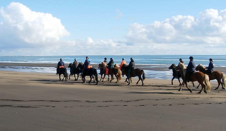 Balade à cheval à la journée au bord de l'océan   Sud de l'Islande
