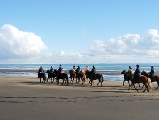 Horse Riding on a Beautiful Beach   Day Tour