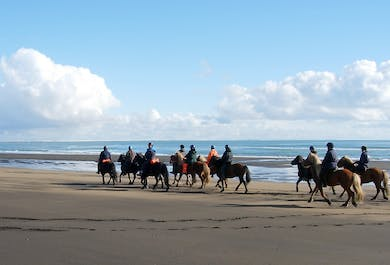 Horse Riding on a Beautiful Beach | Day Tour