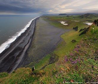 セルフドライブツアー8日間|アイスランドをー周する旅