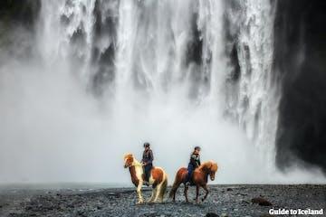 horseGTI.jpg