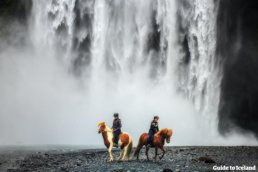 Skógafoss en Islande