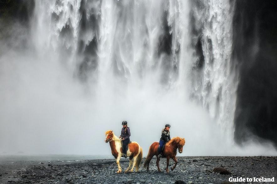 Horseback riding in Iceland, just beside Skógafoss waterfall.