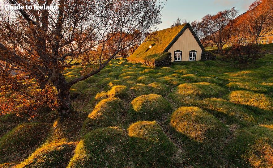 Die Hofskirkja-Torfkirche in Südost-Island