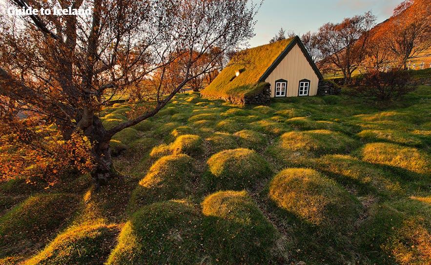 Kościół z trawą na dachu