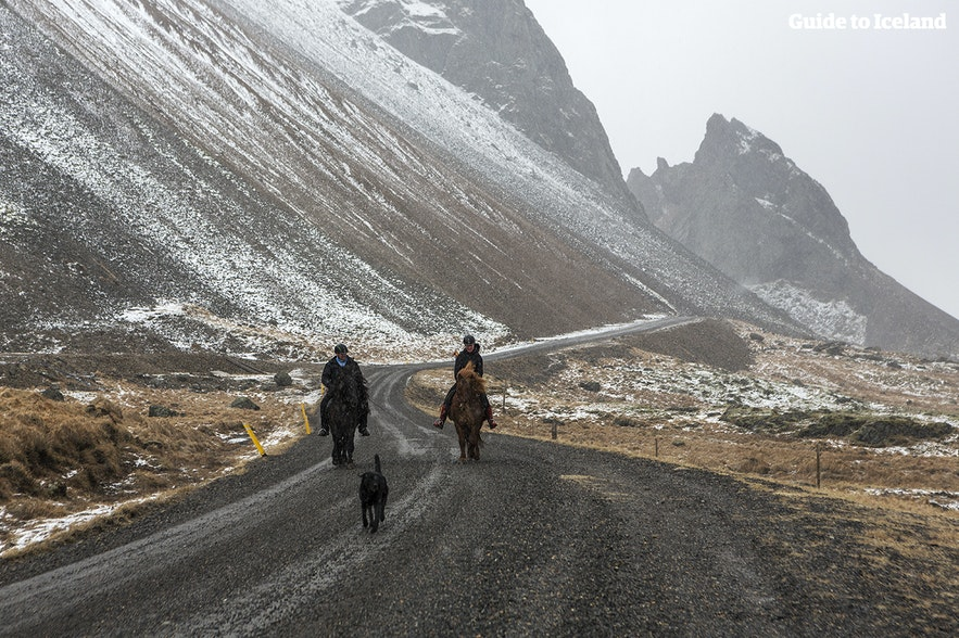 Horseback riders down a mountain road during the winter in Iceland.