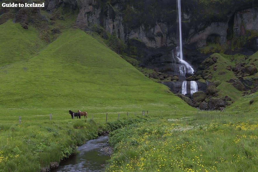 Malowniczy wodospad na Islandii