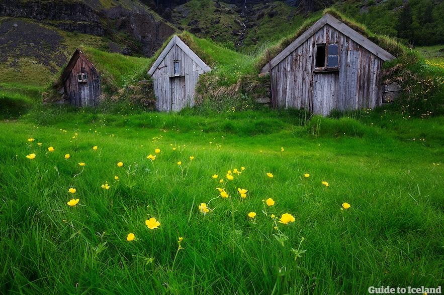 아이슬란드 잔디지붕 집의 모습