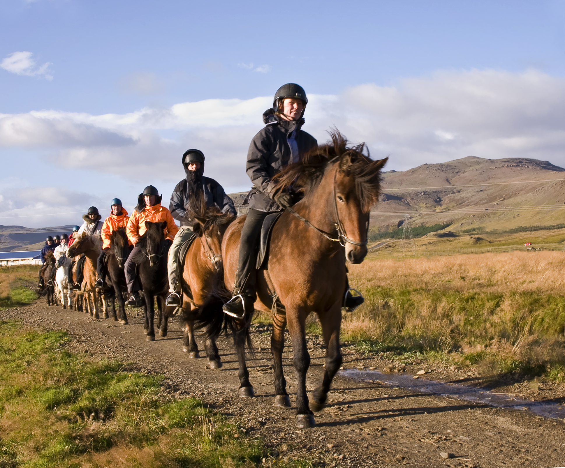 Ride the Icelandic horse through the countryside in the morning.