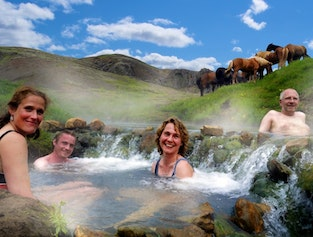 Excursions Cheval Guide To Iceland