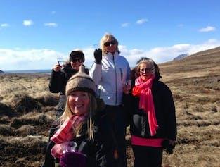 Mosfellsbær Tour   Visit Like a Local