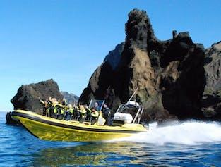 Tour en bateau rapide autour des îles Vestmann