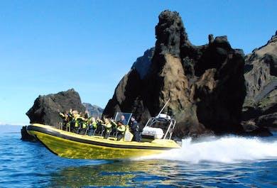 One Hour Small Island Tour in Vestmannaeyjar
