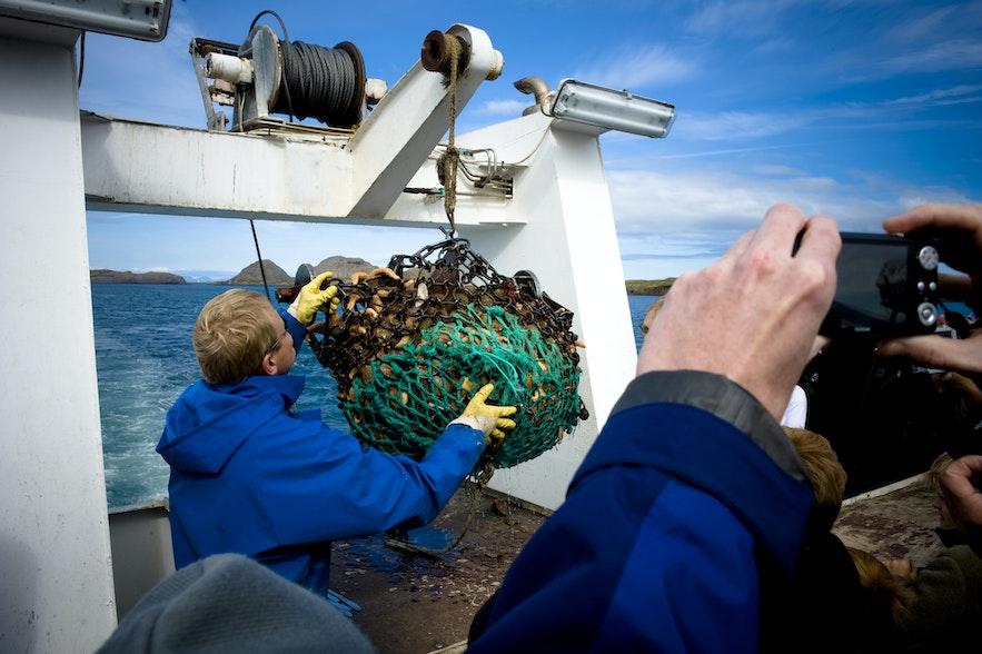 参加维京寿司船游,能品尝到最新鲜的海鲜