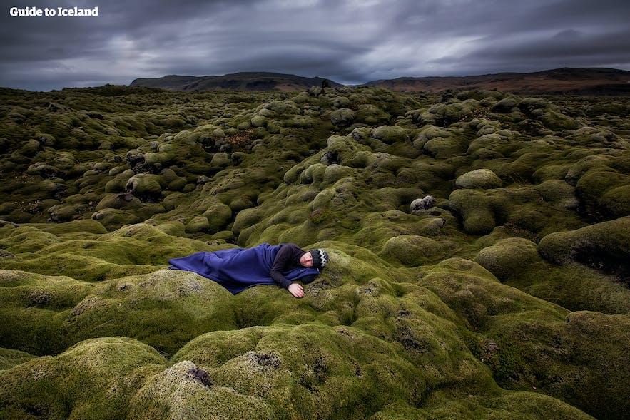 Prenez soin de la mousse islandaise qui est très fragile