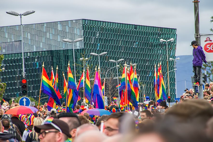 Harpa, Iceland's concert hall on Gay Pride