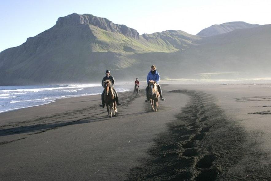 Катание на лошадях по черным пескам Исландии — незабываемые впечатления!