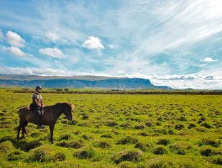 Horse riding and glacier hiking | Combo tour from Reykjavik